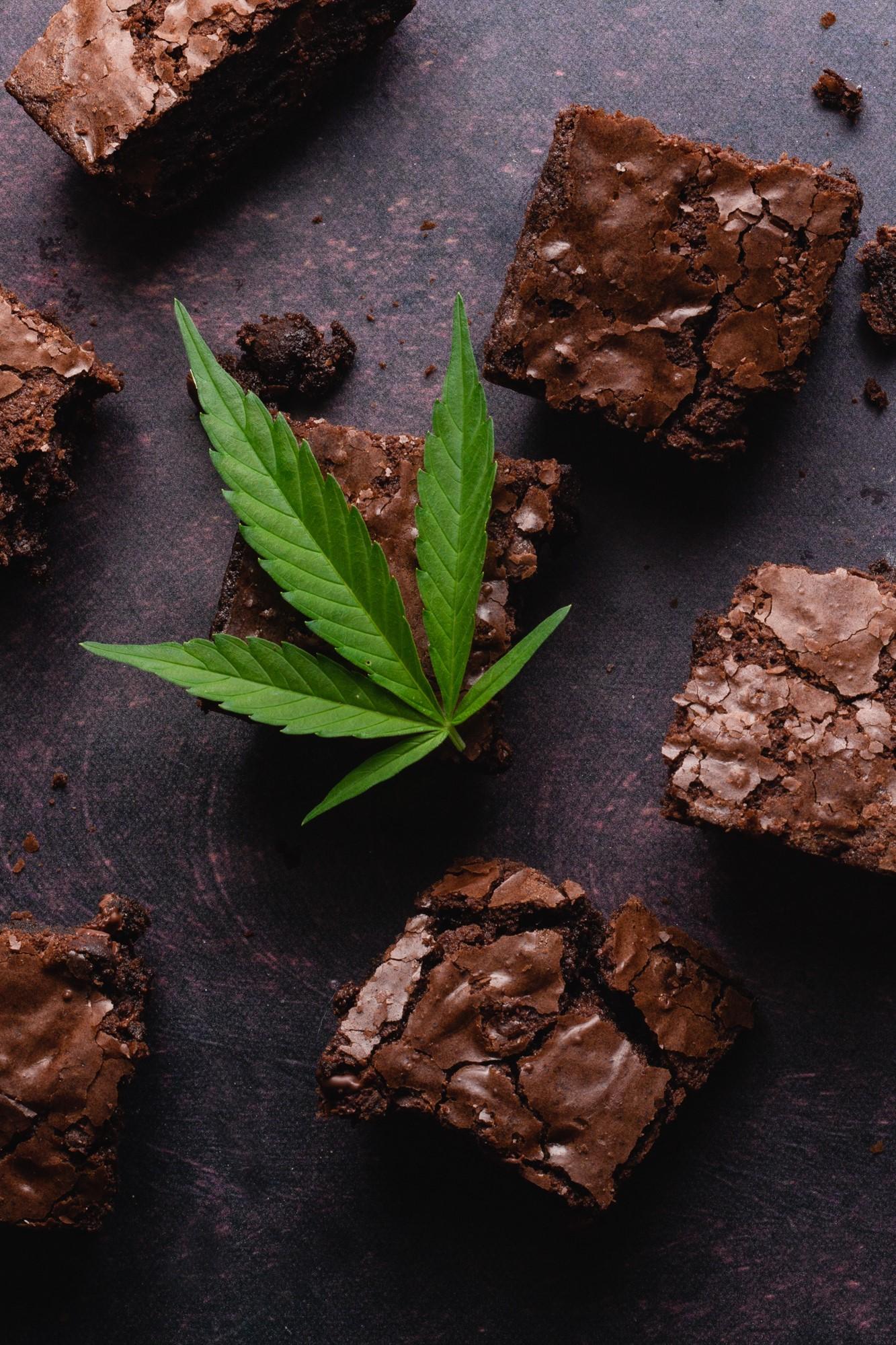 Pot brownies displayed with a marijuana leaf. Hashish fudge is part of the history of cannabis chocolates.