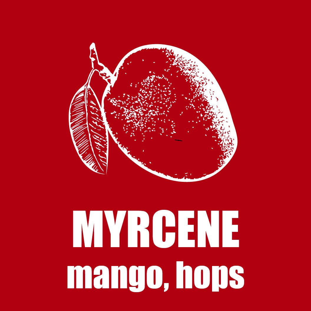 A red graphic picturing a sketch of a mango; the text reads,